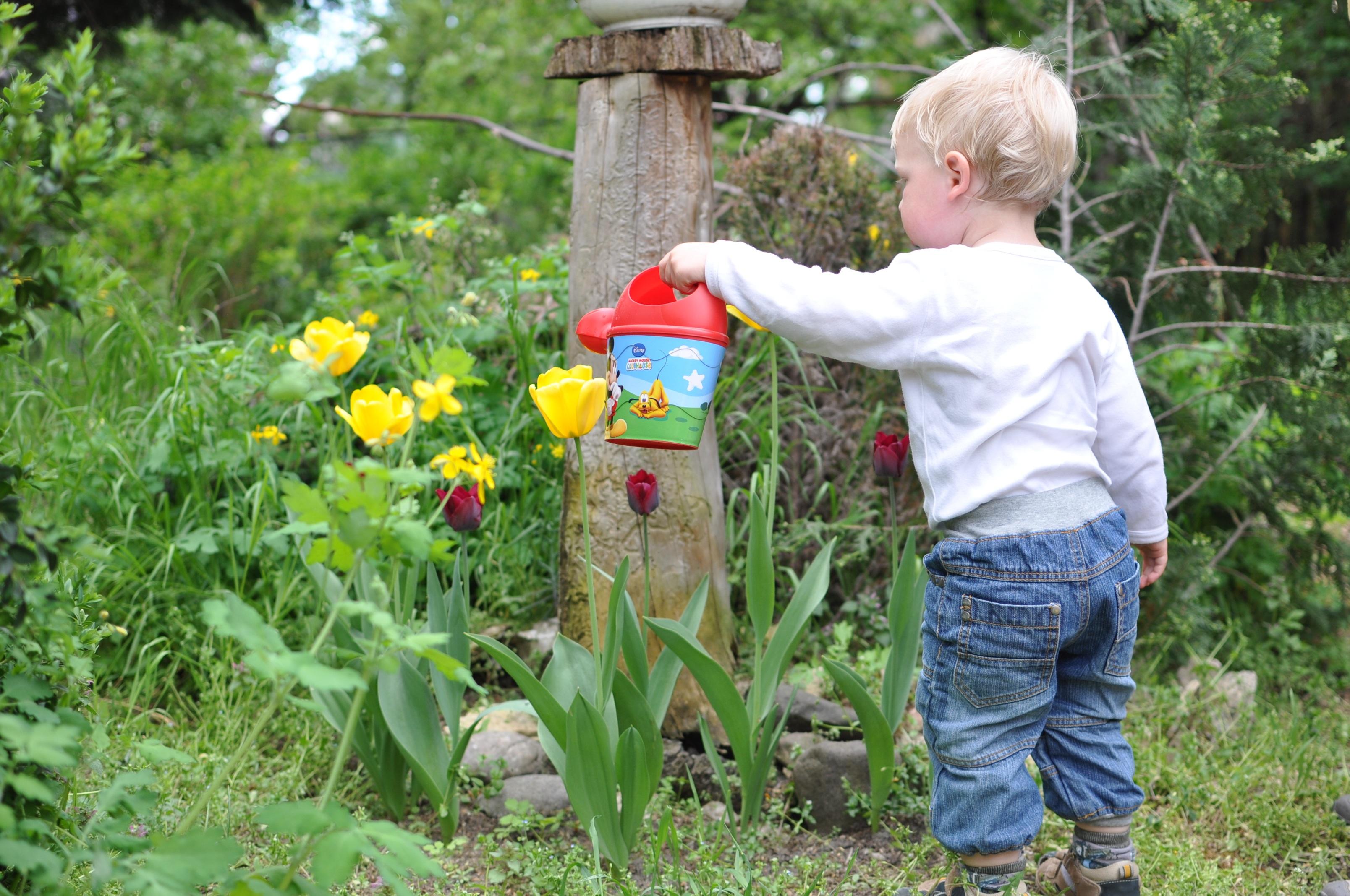 A child gardening