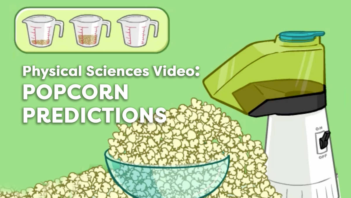 Popcorn Predictions Math Video