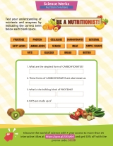What You Need to Know About Nutrients