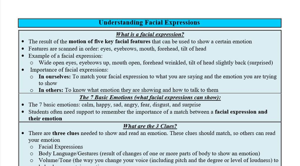 Understanding Facial Expressions in Autism - A Guide for Generalists