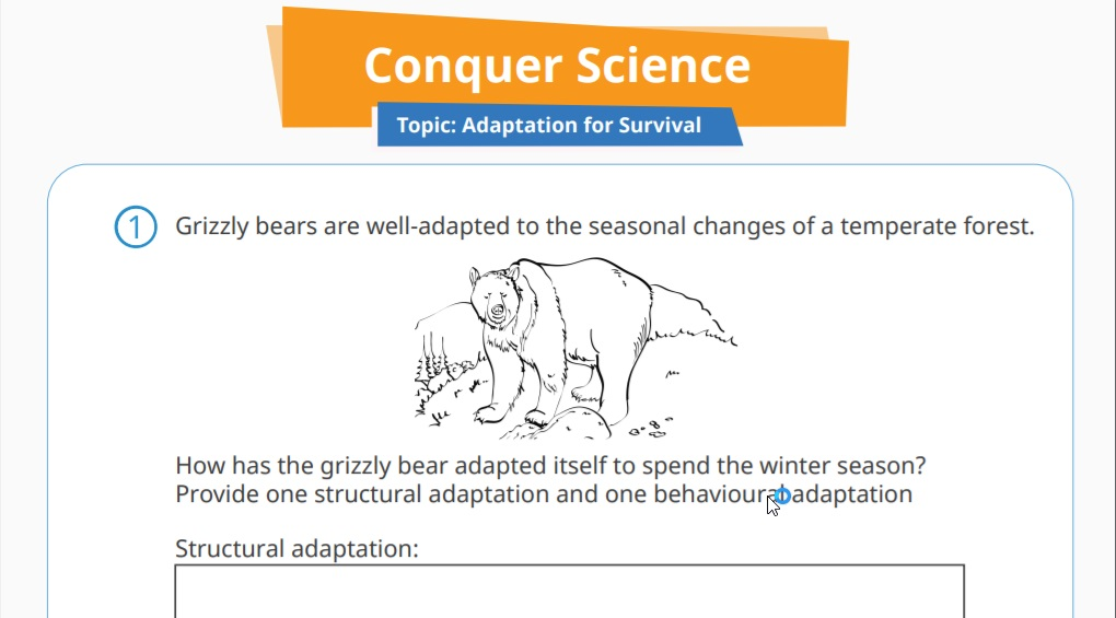 Animal Adaptations Lessons Printables Activities K 12