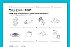 balanced diet worksheet