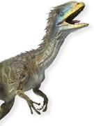 Instant Expert: Dinosaurs