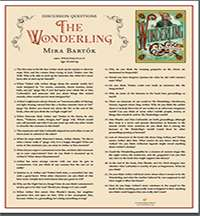 The Wonderling Teaching Guide