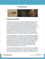 Fossils Background Information Worksheet
