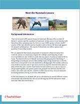Meet the Mammals Background Information Image