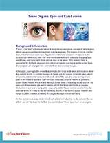 Sense Organs: Eyes and Ears Background Information