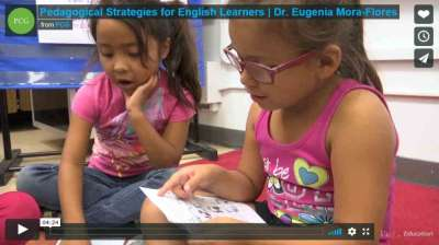 Pedagogical Strategies for English Learners