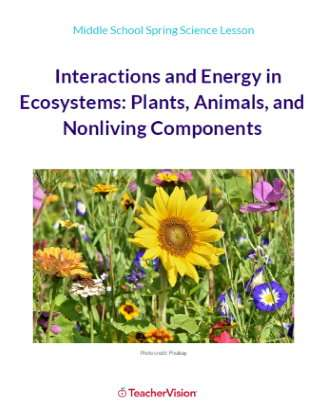Interactions and Energy in Ecosystems
