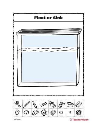 Float or Sink: Gravity and Bouyancy Activity
