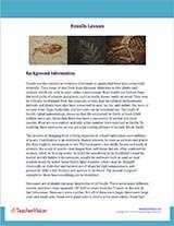 Fossils Background Information Worksheet