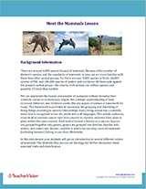 Meet the Mammals Background Information Image