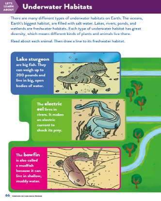 TinkerActive Science Activity Lesson: Underwater Habitats (Grade 2)