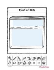 Float or Sink - TeacherVision