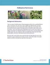 Pollination Pals Background Information Cover
